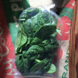 Bentum Family Farm Spinach – 1/4lb