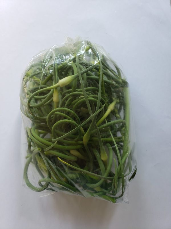 Cox Family Farm Garlic Scapes 1lb 2